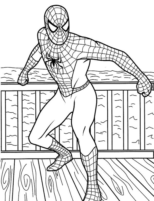 Spiderman Malowanka Do Wydruku Lub Pobrania