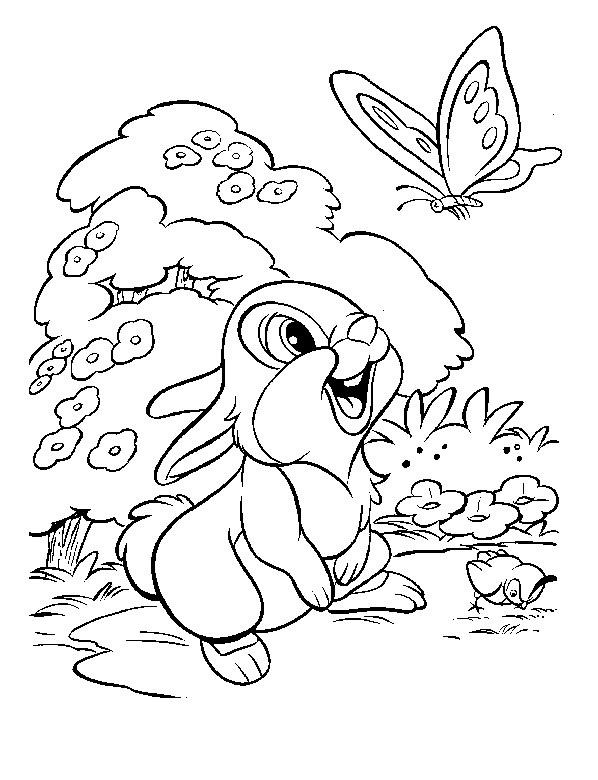 Kolorowanka Disney Krolik I Motylek