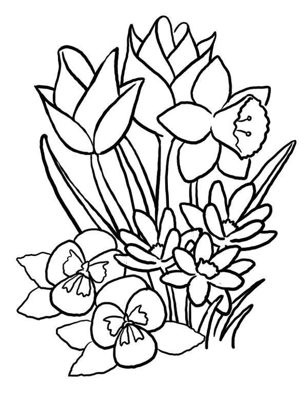 Kwiaty Wiosenne Kolorowanka Kolorowanki Do Druku E Kolorowanki