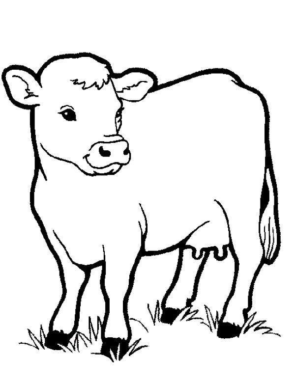 Krowa Kolorowanka Dla Dzieci Kolorowanki Do Druku E Kolorowanki