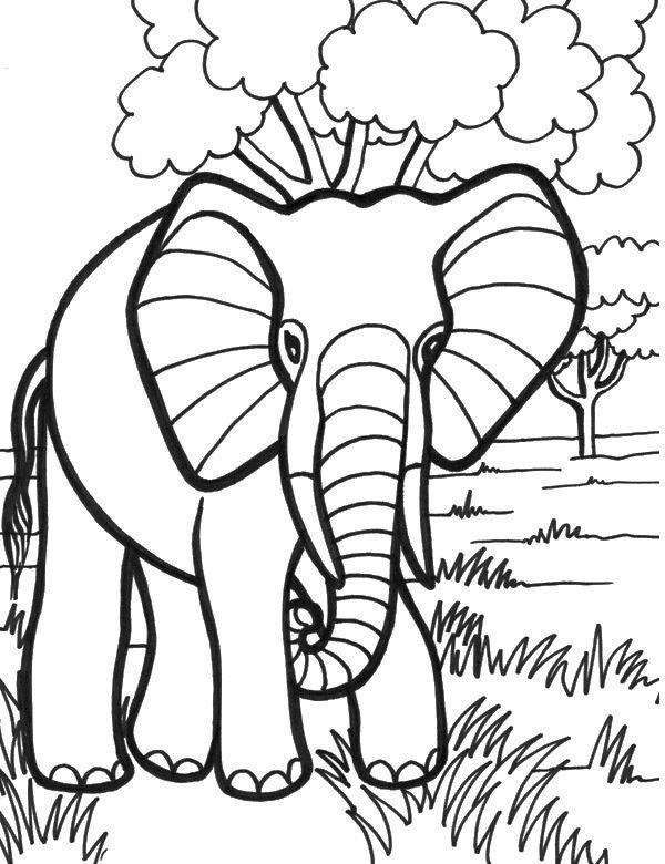 Słoń malowanka