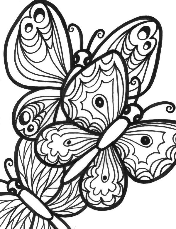 Dwa Motyle Kolorowanki Do Wydrukowania