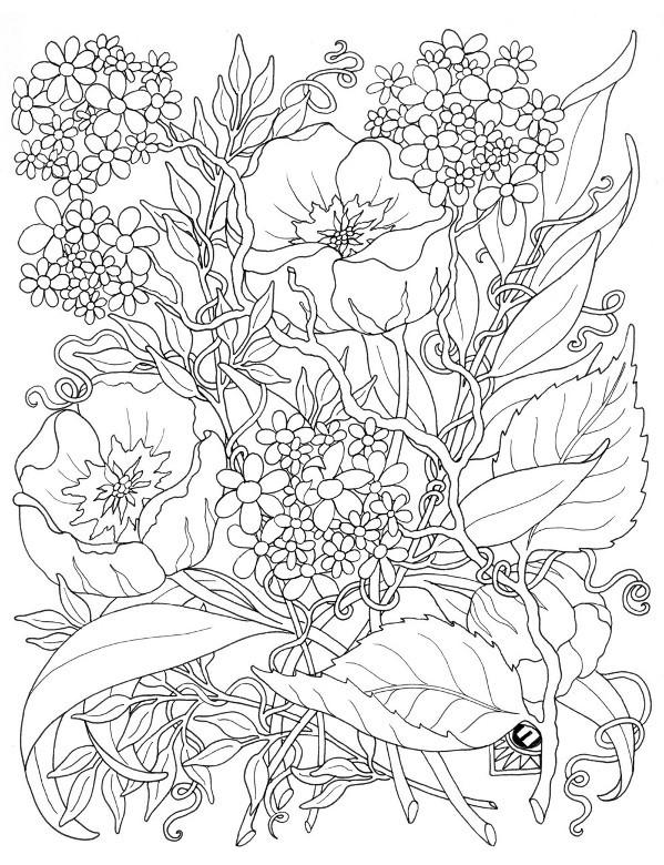 Darmowa Kolorowanka Do Wydruku Z Kwiatami Na łące