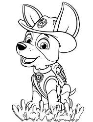 Psi patrol do kolorowania
