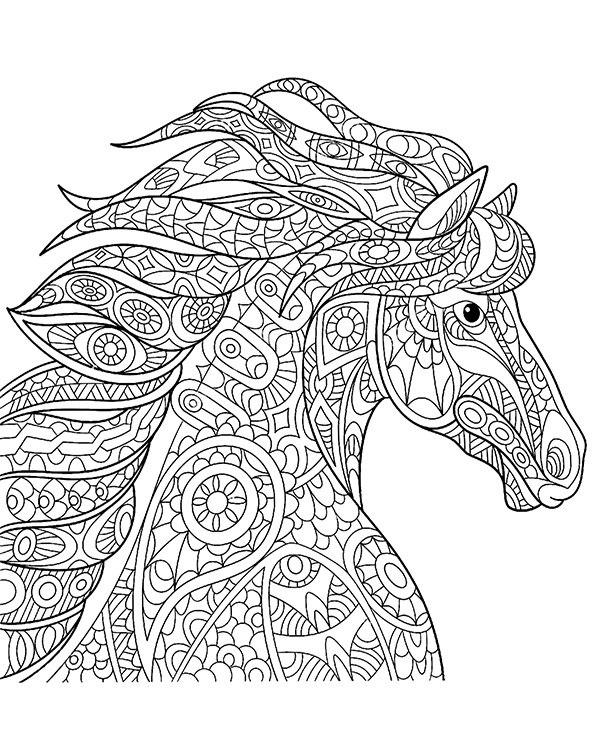 Koń Relaksacyjna Kolorowanka Dla Dorosłych