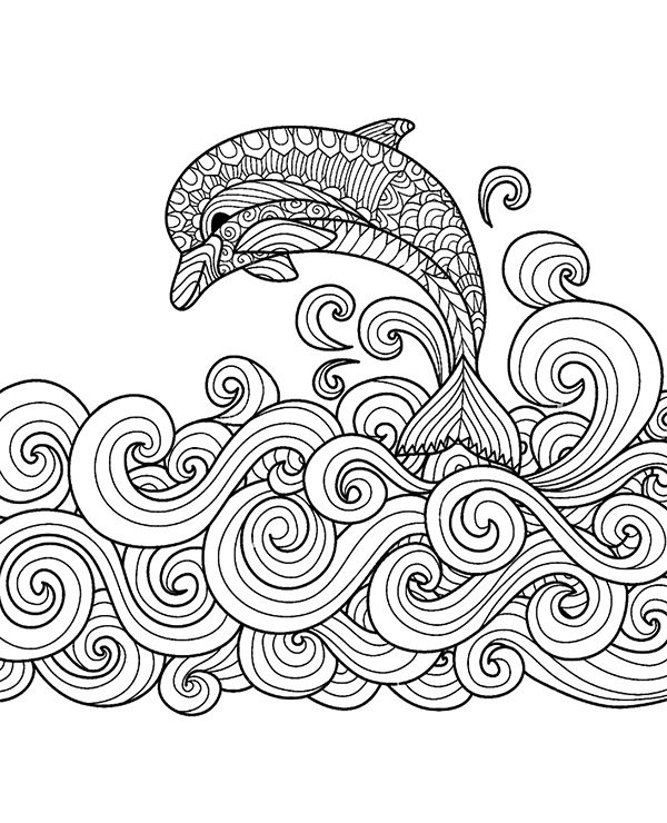 Delfin Morzu Kolorowanka Druku Malowanka Kolorowanki