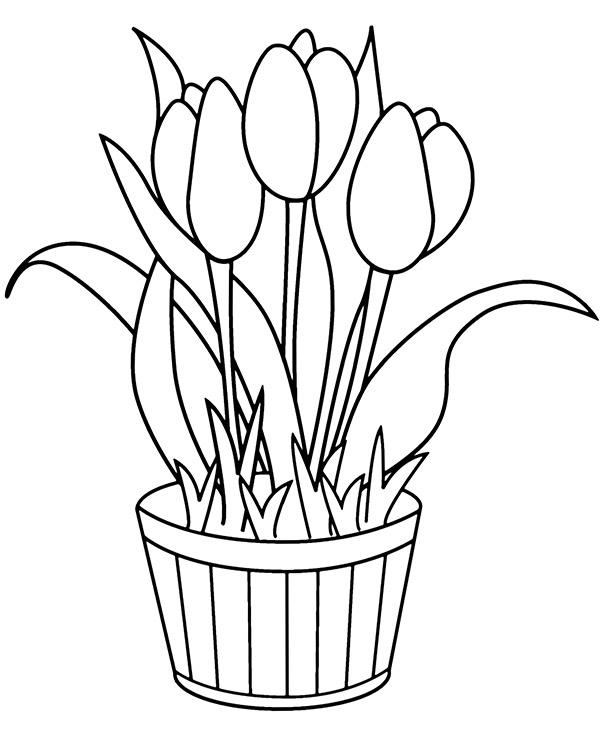 kolorowanka z tulipanami  malowanka dla dziecka