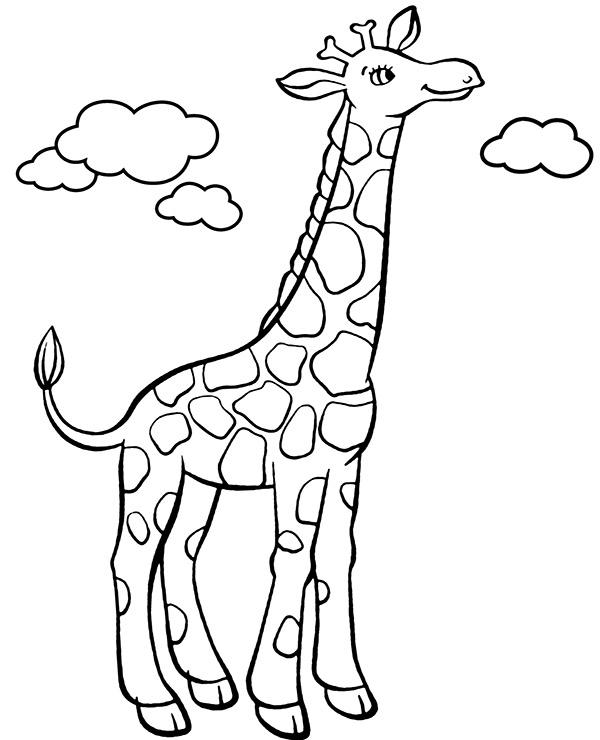 Żyrafa kolorowanki ze zwierzętami z Afryki