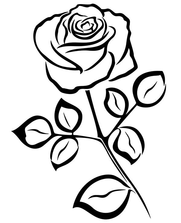 Wzór Tatuażu Z Różą Kwiat Malowanka Relaksacyjna