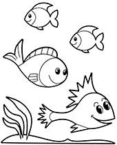 Wodny Swiat Kolorowanki Ze Zwierzetami Morskimi Ryby Rekiny