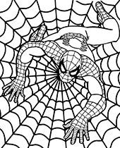 Spiderman w sieci kolorowanki dla dzieci