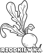 Warzywa Kolorowanki Malowanki Do Wydrukowania Za Darmo